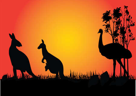 emu: kangarooo and emu in the sunset