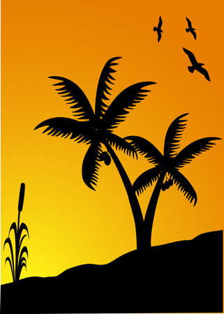 silhouette ofpalms and birds at sunset  Vector