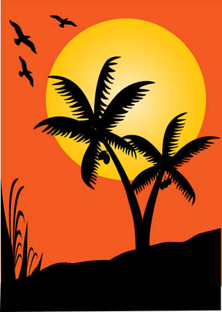 silhouette of palms and birds at sunset  Vector