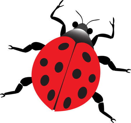 critters: red lady beetle Illustration