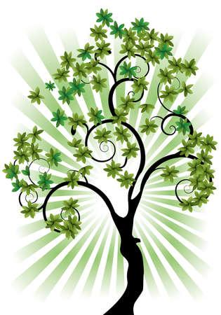 ein einzelner Baum auf einem weißen Hintergrund mit Strahlen Vektorgrafik