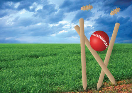 cricket field: grass and cricket set with blue sky Stock Photo