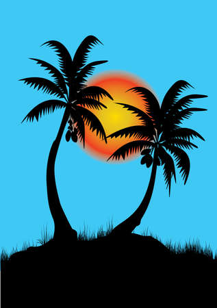 two palm trees with sunset background and blue sky Vector