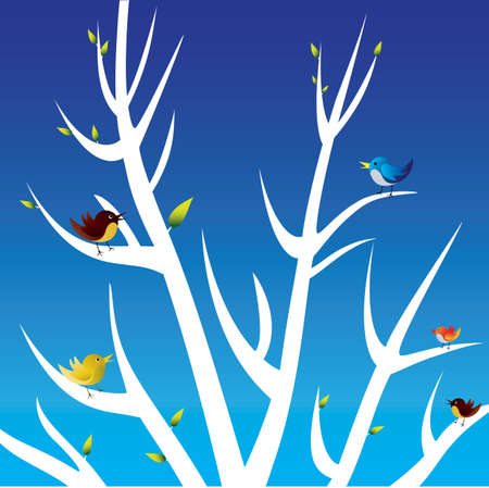 five birds on white tree branches with blue background Vector