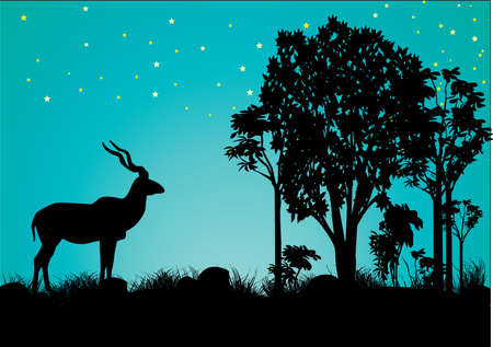 a  single kudu resting in the evening Vector