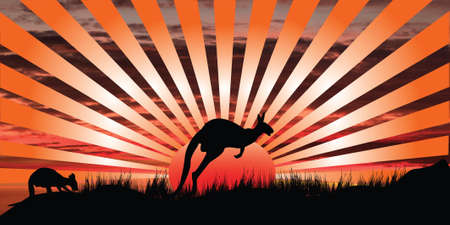 silhouette of kangaroo in the sunset with rays  Stock Photo - 9872069
