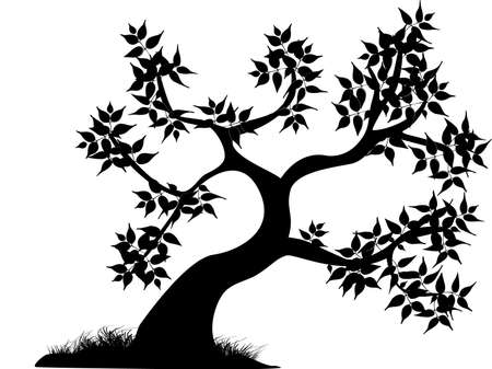 black and white line drawing: a single black curvey tree with leaves