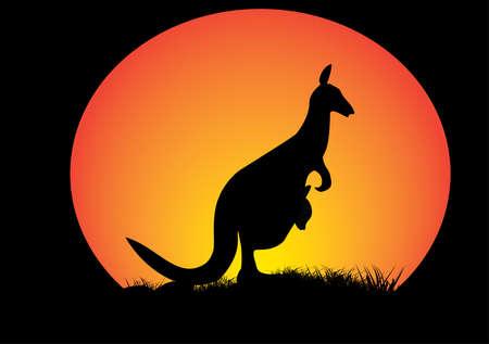 australian outback: canguro con la luna de naranja y la hierba como la silueta