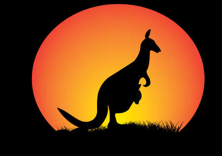 kangaroo with  orange moon and grass as silhouette Vector