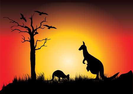 sunset with two kangaroos and dead tree Vector