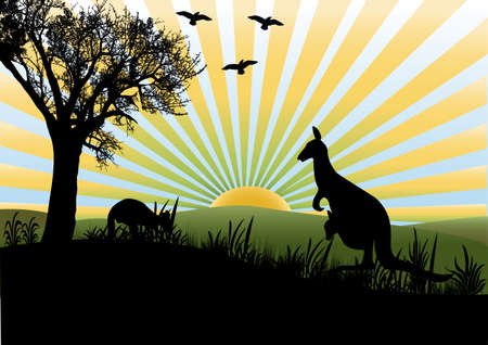 landscape scene with kangaroo Vector