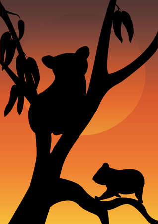 two koala in a tree with moon background Vector