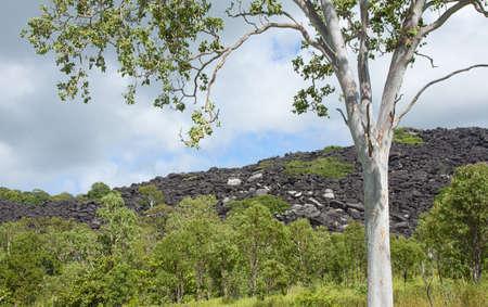 Las Monta�as Negras misteriosas est�n impregnadas de mitos y leyendas, el lugar para la gente kuku yalanji Foto de archivo - 13623748