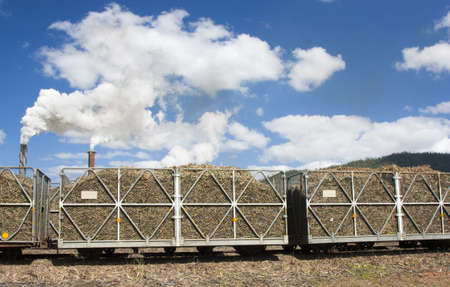 cairns: sugarcane hauling bins in the Cairns area Australia