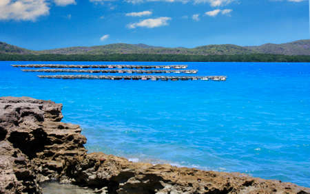 torres: oyster farms on Friday Island in the Torres Strait Australia