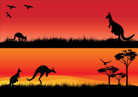 a set of two illustrations with australian kangaroos in the sunset
