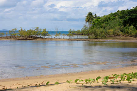 douglas: Port Douglas waterfront as the tide is going out Stock Photo