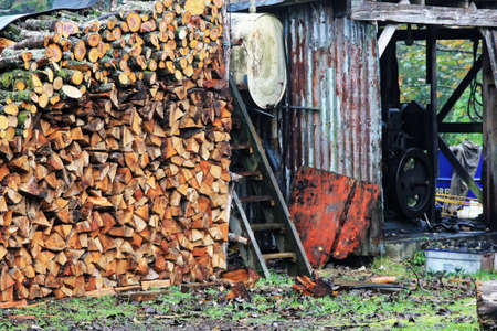 stored: timber stored and cut for the winter