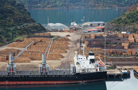 south island new zealand: Picton  timber yard South Island New Zealand