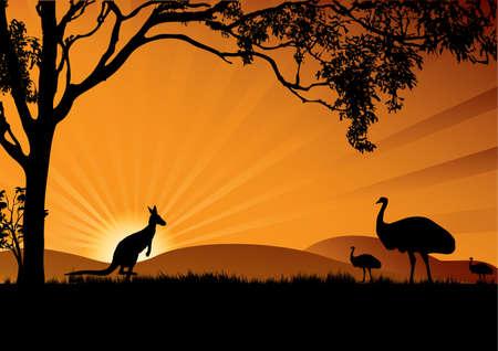 emu bird: a silhouette of emus and kangaroo in the sunset