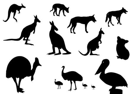 roo: different Australian animals silhouette on white background