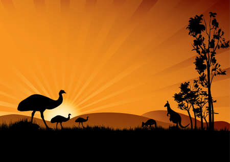down under: a silhouette of emus and kangaroo in the sunset Australian