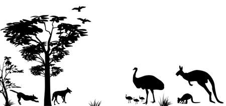 オーストラリア カンガルー、エミュー、白い背景の上の dingos の野生動物のシルエット