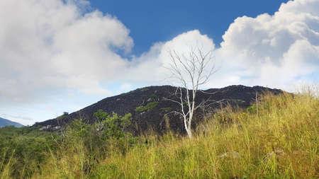 オーストラリア、クイーンズランド州クックタウンの近く黒い山 写真素材