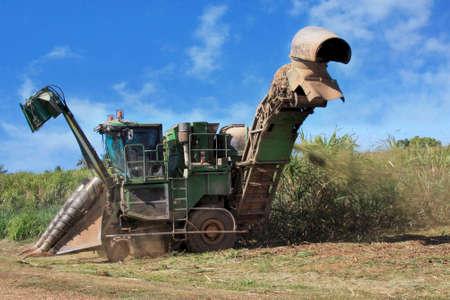 Sugar cane farming in North Queensland Australia Stock Photo