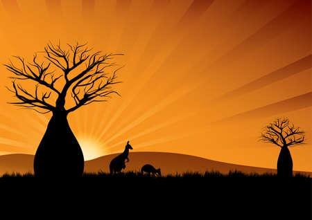 Silhouette of Australian kangaroos among baobab trees at sunset