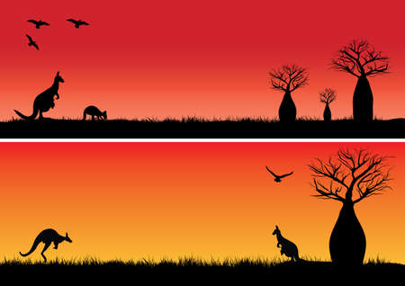 Boab trees and two kangaroos in the sunset  outback Australia Illustration