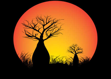 Two boab trees in a circle black background Illustration