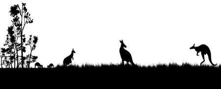 Black silhouette of koala and kanagroos on white background.