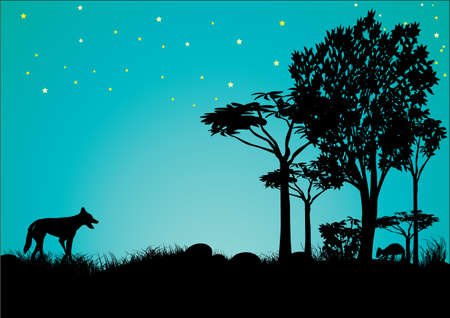silhouette of dingo and kangaroo with blue sky and stars in Australia Ilustração