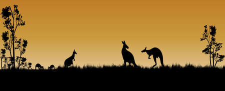 kangaroos and trees as a silhouette in the Australian sunset 일러스트