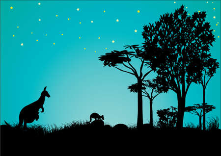 silhouette of kangaroo with blue sky and stars in Australia