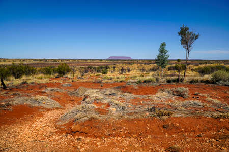 View of Mount Conner in the distance of Northern Territory Australia 写真素材 - 129845336