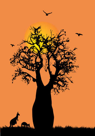 Boab tree with birds kangaroo and moon as a silhouette with orange background