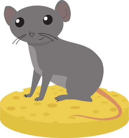 Gray mouse sitting on the piece of cheese