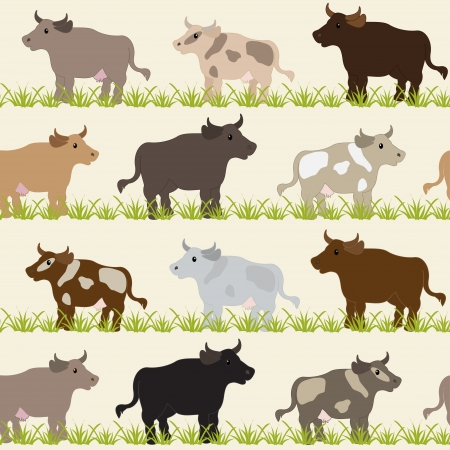Seamless pattern with cows, bulls and grass Stock Vector - 17343556