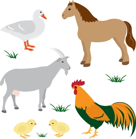 Farm animals vector set 2 Vector