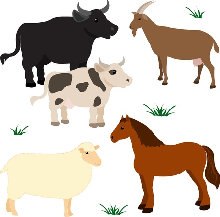 Farm animals vector set 3 Vector