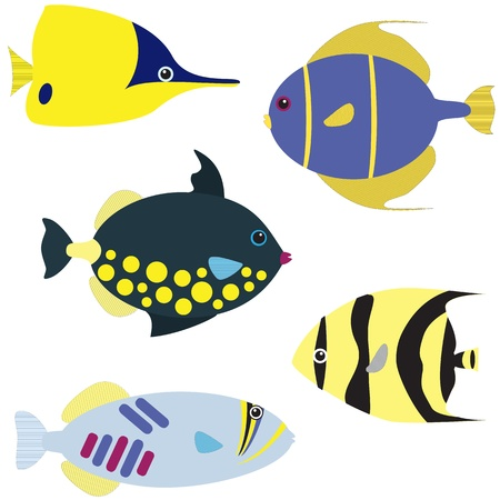 Vector set of tropical fish isolated on white Stock Vector - 18429755