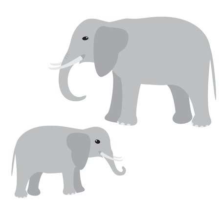 Big and little elephant isolated on white