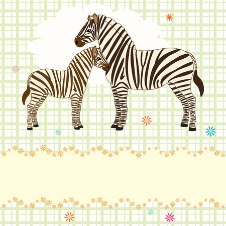 Vector card with adult and baby zebras Vector