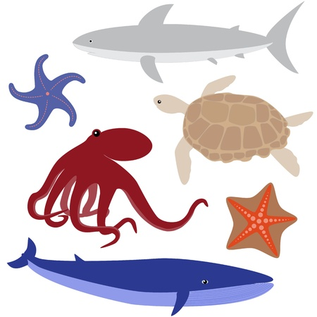 Set 4 of sea life  octopus, shark, whale, turtle, starfish