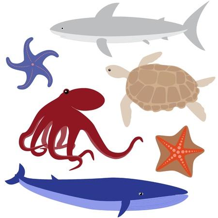 devil fish: Set 4 of sea life  octopus, shark, whale, turtle, starfish