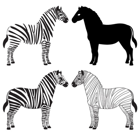 Set of various zebra silhouettes