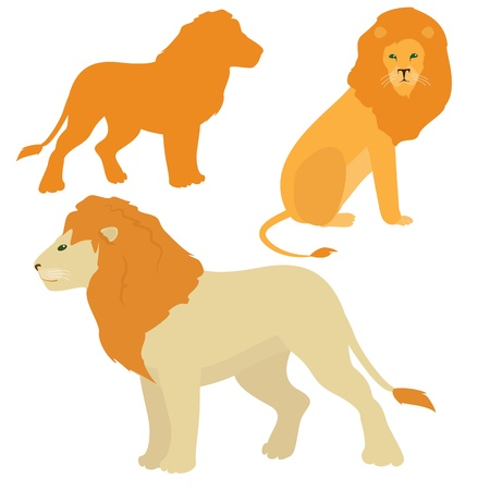 Set of standing and sitting lion images Vector