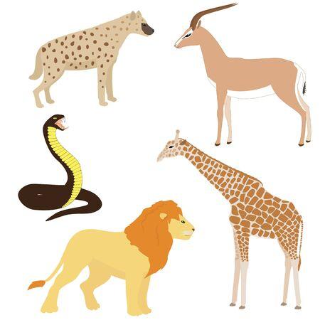 an adder: Vector set 2 of cartoon african animals